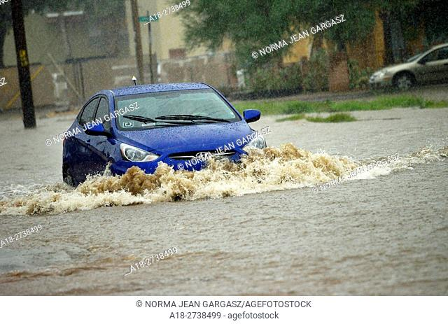 An passenger vehicle drives through flooded streets during a monsoon storm, Sonoran Desert, Tucson, Arizona, USA