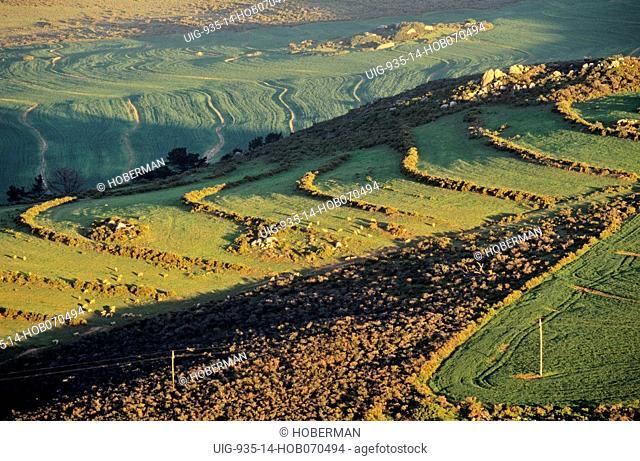 Durbanville Hills Wine Route, Durbanville, Western Cape