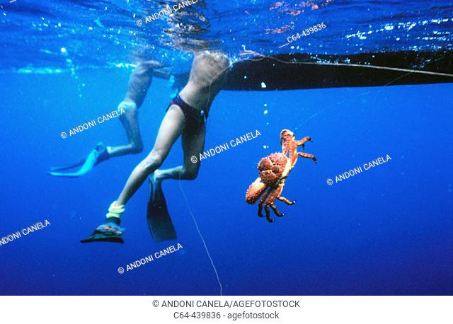 Lobster fishing in the Caribbean Sea. Kuna Yala, San Blas, Panama
