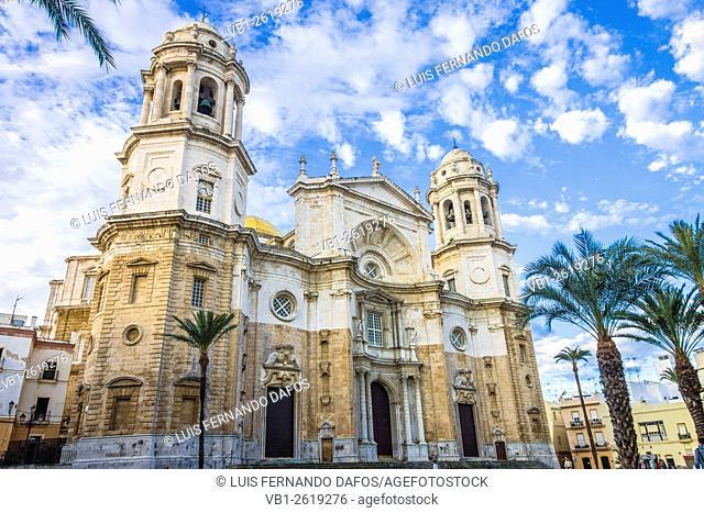Santa Cruz Cathedral, Cadiz, Andalusia, Spain