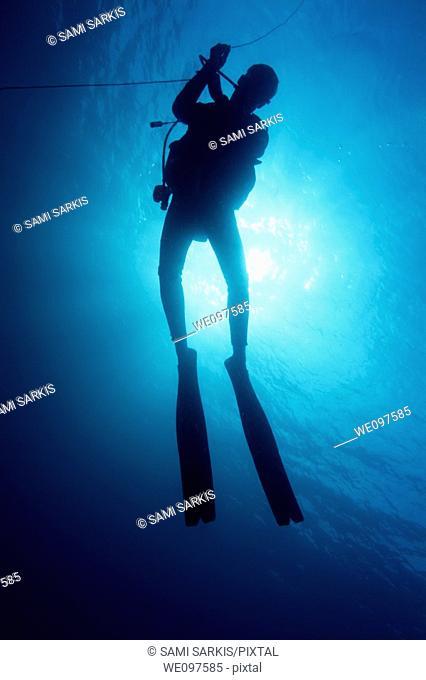 One scuba diver underwater near the Baa Atoll, Maldive Islands