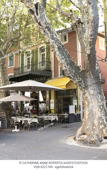 Ancient, rustling plane tree with mottled grey and white textures in the main square of L'Isle -sur-la-Sorgue, and fallen leaves claimed by the Mistral wind...