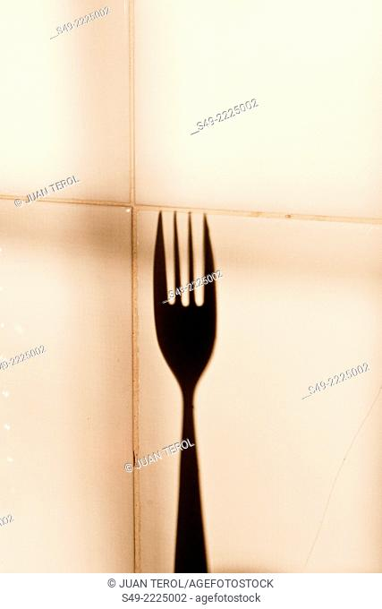 Tines of fork