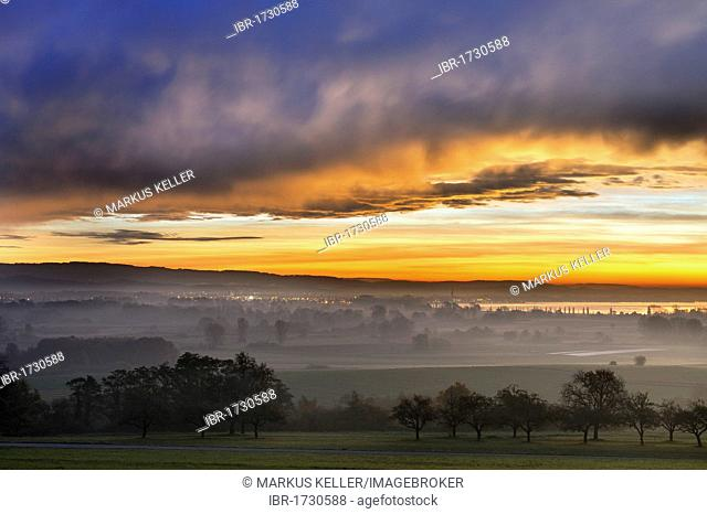 Early morning mood with distinctive Foehn weather over the Radolfzeller Aachried Nature Reserve, on the horizon, Lake Constance, Konstanz district
