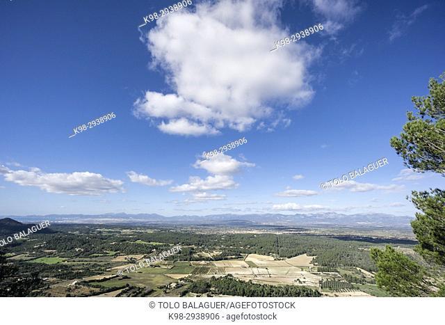 Cumulus over Majorca plains, Algaida, Mallorca, Balearic Islands, Spain