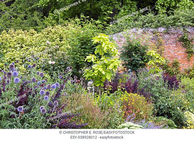 Colouful summer garden border in a walled garden