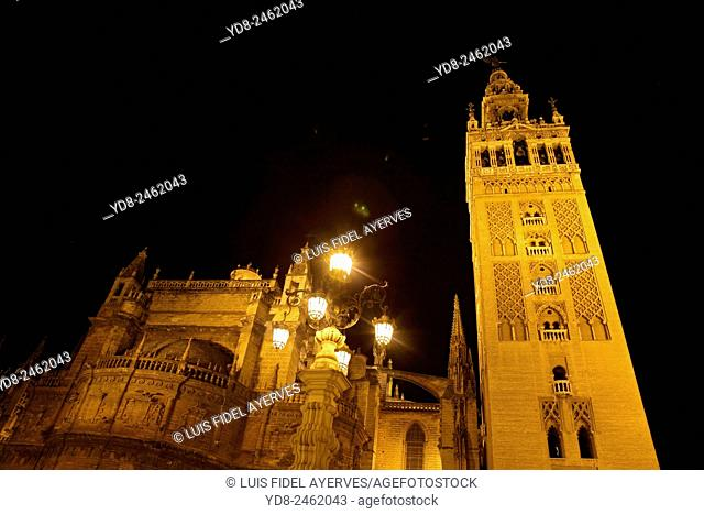 Cetedral night Seville, Spain