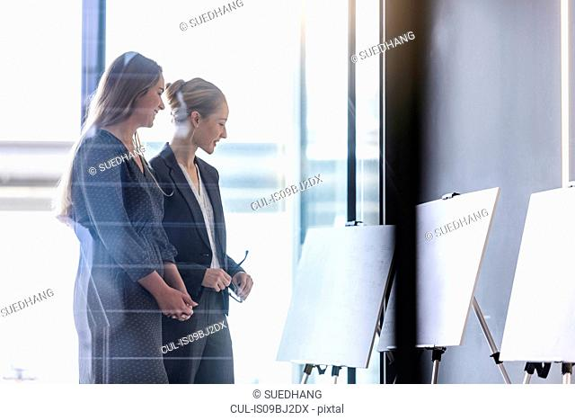 Businesswomen discussing ideas in office