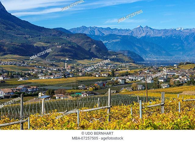 Italy, South Tyrol, Alto Adige, Überetsch, South Tyrol's South, Wine Route, Girlan, Ignaz Niedrist Winery, Vineyard, View of St. Pauls