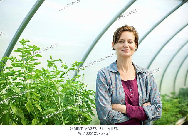 A woman working at an organic farm, in the greenhouse or polytunnel