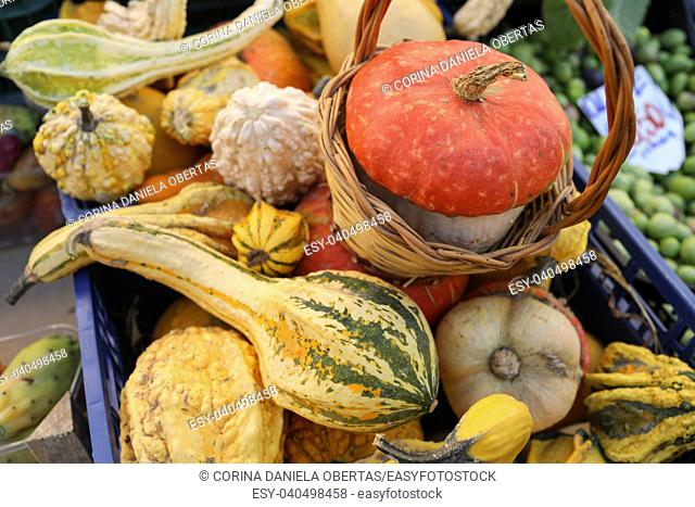Mix of squashes inside plastic case on market stall