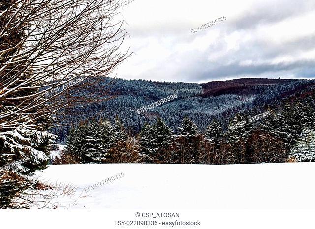 Winter Sauerland
