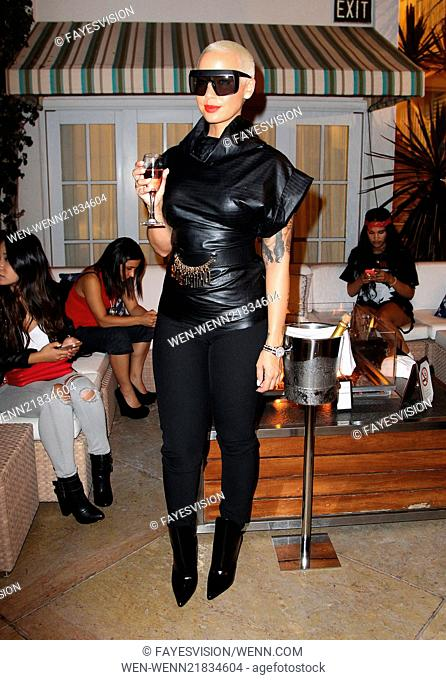 The XXIV Karat Launch Party At The Beverly Hilton - Inside Featuring: Amber Rose Where: Beverly Hills, California, United States When: 16 Oct 2014 Credit:...