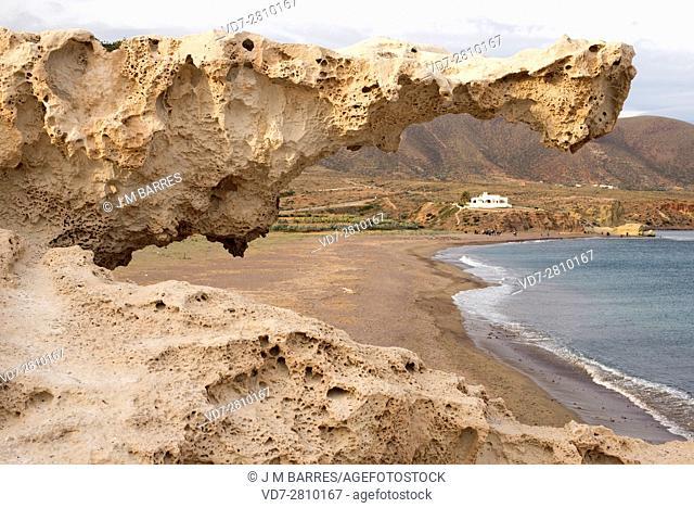 Fossil or fossilized dune. This photo was taken in Los Escullos, Cabo de Gata, Almeria, Andalusia, Spain