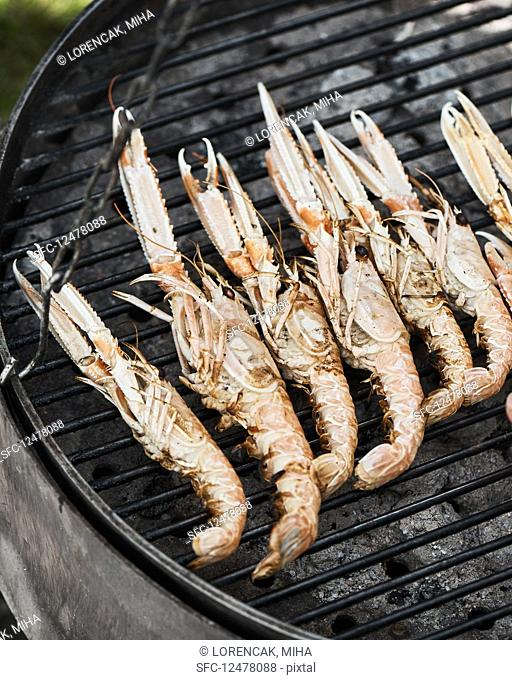 Shrimps on a barbecue