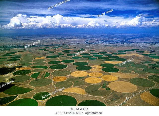 Agriculture - Aerial view of center pivot irrigated circular agricultural fields / NM - nr. Farmington
