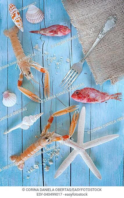 Concept of sea on the table: raw lobsters, scorpionfish and seashells on blue wooden background