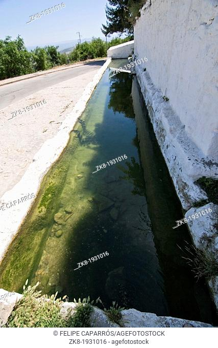 Drinking trough for farm animals, Sabiote, Jaen, Spain