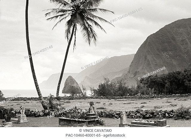 Hawaii, Molokai, Kalaupapa, Graveyard and palms Sepia photograph