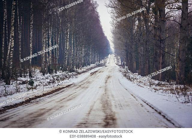 Dirt road covered with snow near Jalowka village, Podlaskie Voivodeship of Poland