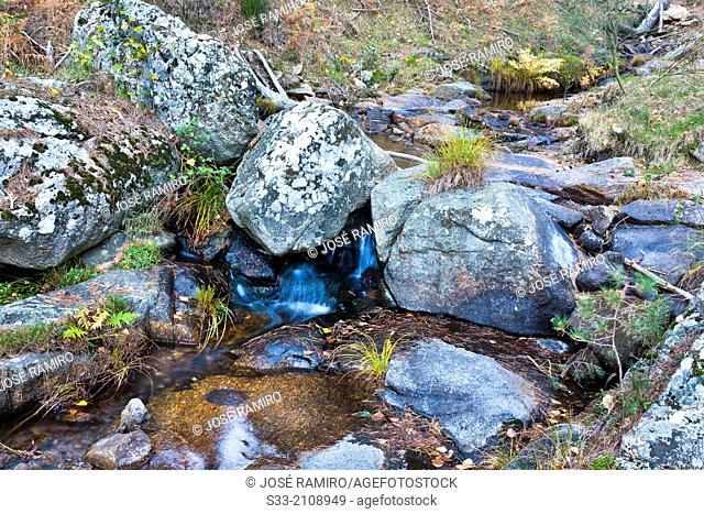 Hornillo stream in the Sierra de Guadarrama. Robledondo. Madrid. Spain