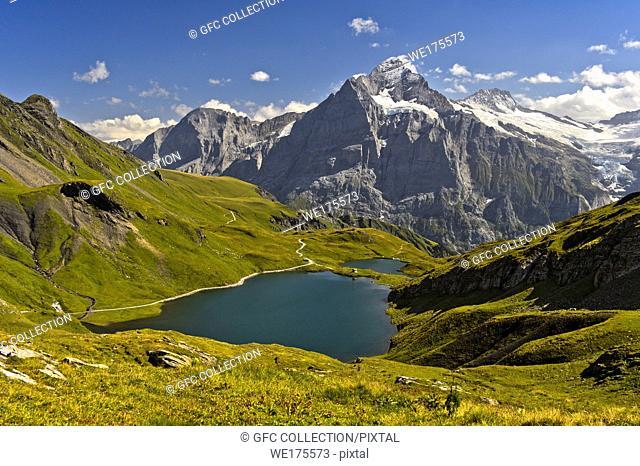 Mountain lake Bachalpsee and the peak Wetterhorn behind, Grindelwald, Bernese Oberland, Switzerland