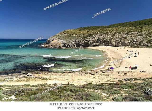 Cala Torta beach and bay, Arta, Majorca, Balearic Islands, Spain