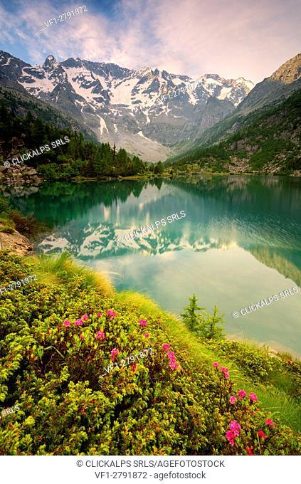 Europe, Italy, aviolo lake in Adamello park province of Brescia
