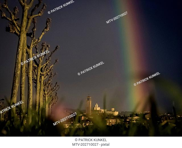 Bare trees n a row with rainbow falling on old town
