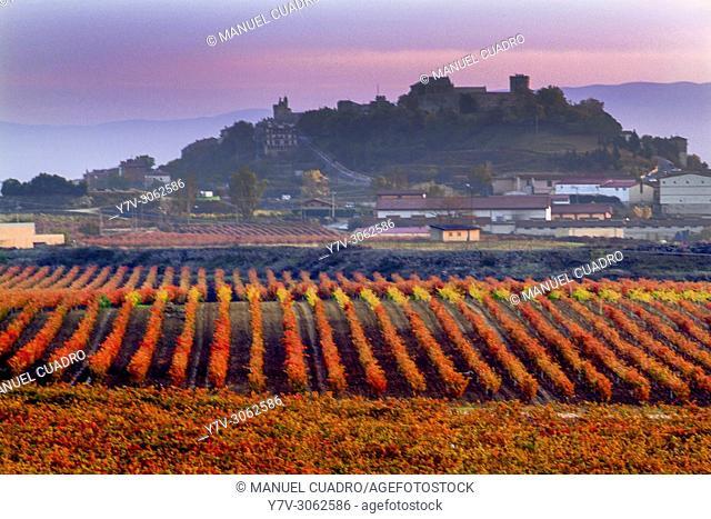 Autumn landscape. Vineyards in Laguardia. La Rioja Alavesa, Basque Country, Spain