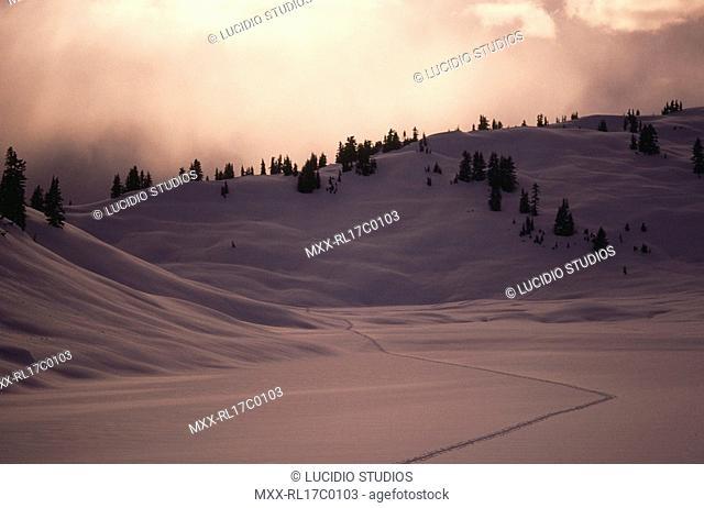 Snow shoe tracks across Rainbow Lake, Whistler, BC