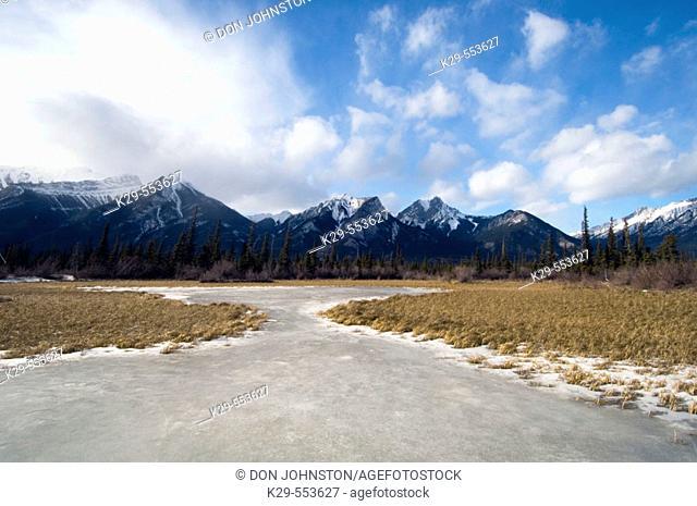 DeSmet Range and ice-covered pond. Jasper National Park. Alberta, Canada