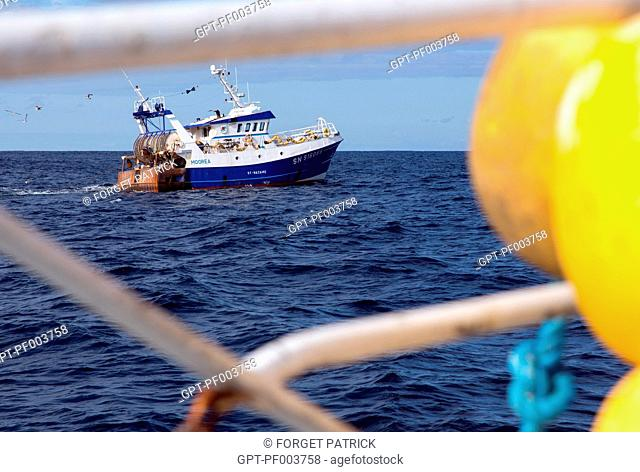 THE BOAT MOOREA FROM SAINT-NAZAIRE, SEA FISHING ON THE SHRIMP TRAWLER 'QUENTIN-GREGOIRE' OFF THE COAST OF SABLES-D'OLONNE (85), FRANCE