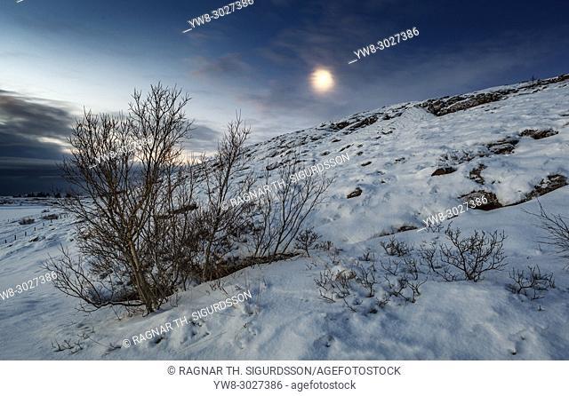 Winter Moonlight, Thingvellir National Park, Iceland. Unesco World Heritage Site