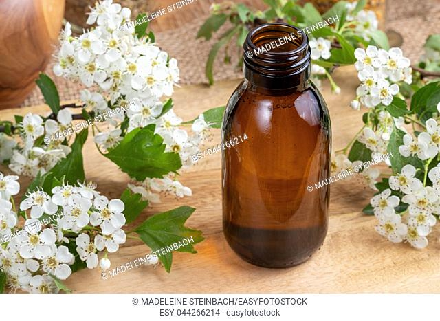 A bottle of tincture with fresh blooming hawthorn branches