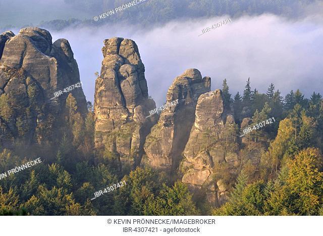 Rocks in morning mist, Autumn, Elbe Sandstone Mountains, Saxon Switzerland, Saxony, Germany