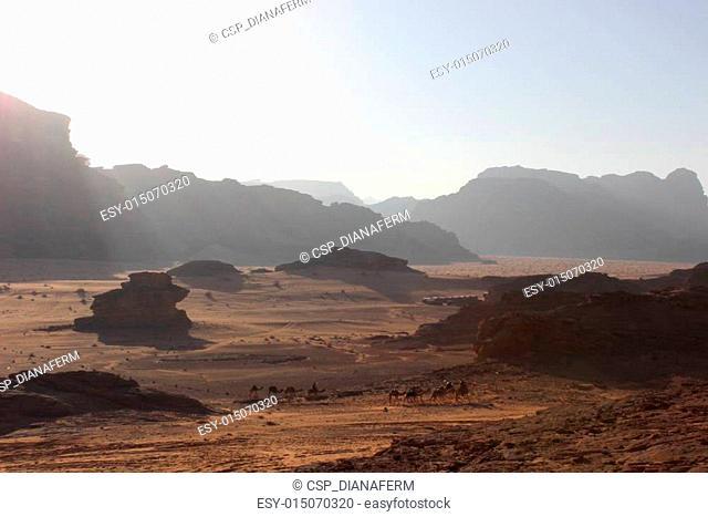 Camel caravan in Wadi Rum, Jordan