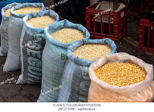 Sacks of corn or maize seeds at the market in Santiago Atitlan, Guatemala