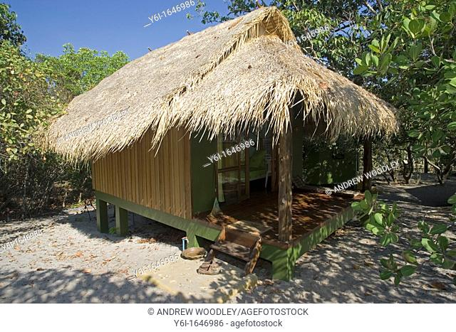 Thatch beach holiday bungalow and palm Ko Phayyam island Thailand
