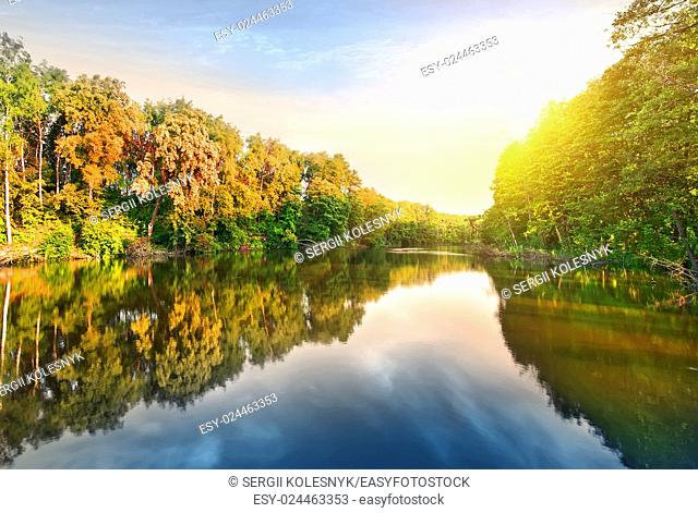 Pink sunrise over calm river in the forest