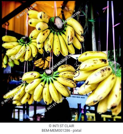 Bananas for sale at market