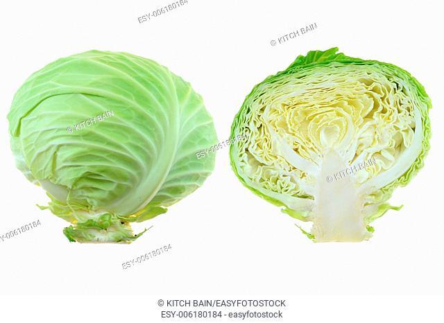 A close up shot of a garden cabbage