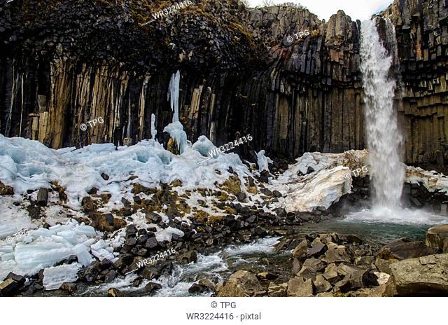 Svartifoss in Skaftafell National Park,Iceland
