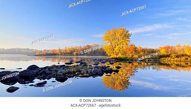 A mature autumn sugar maple reflected in the Vermilion River, Greater Sudbury (Whitefish), Ontario, Canada