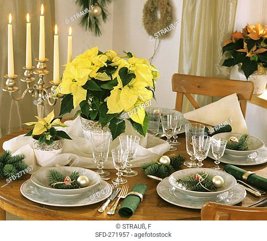 Festive table with poinsettia