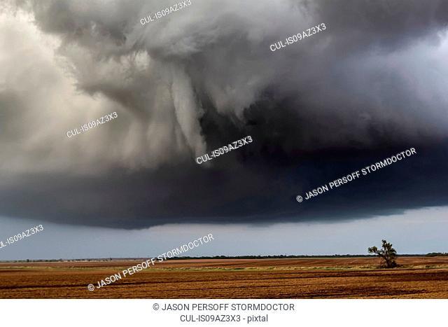 Funnel cloud over farmland