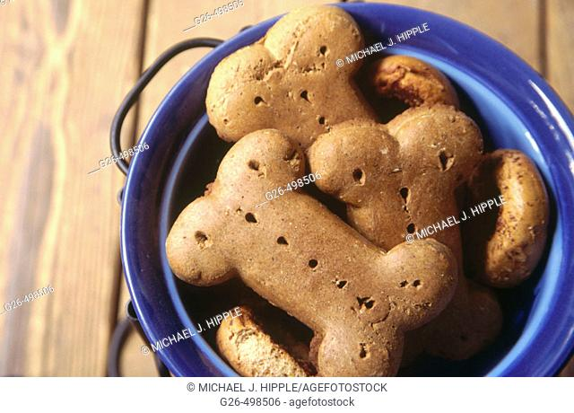 Dog biscuits in food bowl