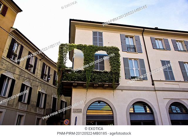Low angle view of ivy decorated building, Milan, Lombardy, Italy