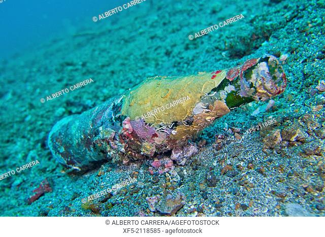 Water Pollution, Sea Waste , Lembeh, North Sulawesi, Indonesia, Asia