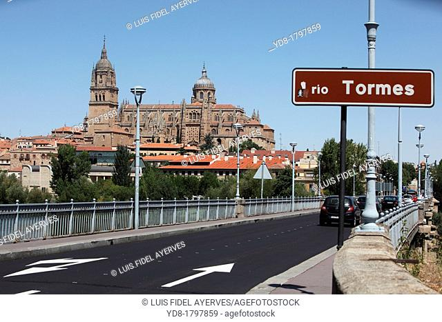 Panoramic view of Cathedral and the bridge Tormes, Salamanca, Castilla y Leon, Spain, Europe